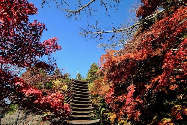 あと何度紅葉を-奈良県桜井市:談山神社