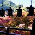 Photos: 美しき回廊-奈良県桜井市:談山神社