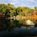 夢窓疎石の庭-京都市右京区:天龍寺