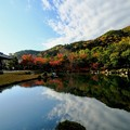 美しき庭園-京都市右京区:天龍寺