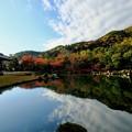 Photos: 美しき庭園-京都市右京区:天龍寺