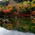 Photos: 世界遺産-京都市右京区:天龍寺