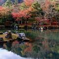 Photos: 年齢を重ねて-京都市右京区:天龍寺