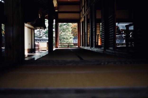 早起きは三文の得-京都市右京区:天龍寺