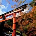 Photos: 鳥居と紅葉-京都市右京区:嵯峨鳥居本