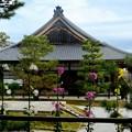 時代劇の舞台-京都市右京区:大覚寺