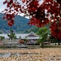子供の頃の思い出-京都市右京区:大覚寺