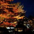 ねねゆかりのお寺-京都市東山区:高台寺