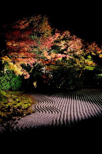 ねねと秀吉-京都市東山区:圓徳院