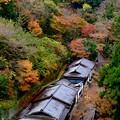 錦色の秋-京都市東山区:清水寺