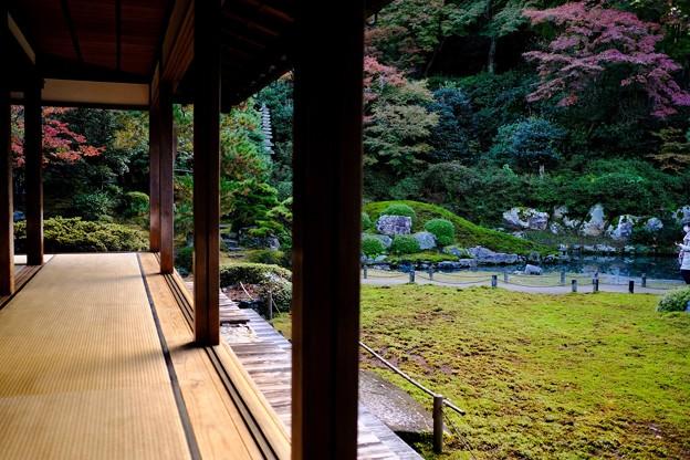 門跡寺院-京都市東山区:青蓮院門跡