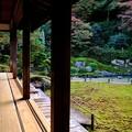 Photos: 門跡寺院-京都市東山区:青蓮院門跡