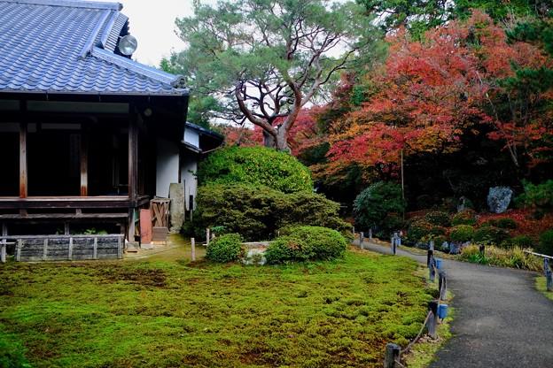 凛とした空気感-京都市東山区:青蓮院門跡