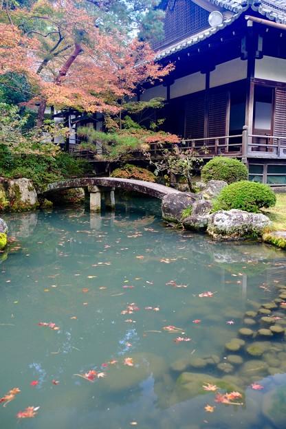 歴史を学ぶ-京都市東山区:青蓮院門跡