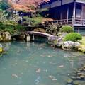 Photos: 歴史を学ぶ-京都市東山区:青蓮院門跡