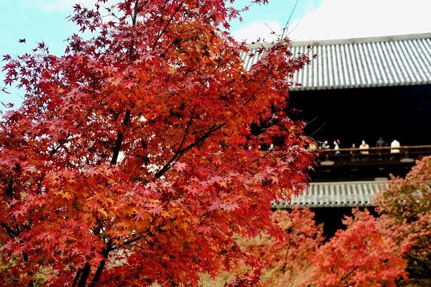Photos: 絶景かな、絶景かな-京都市東山区:南禅寺