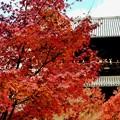 絶景かな、絶景かな-京都市東山区:南禅寺