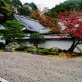 枯山水の庭-京都市東山区:南禅寺