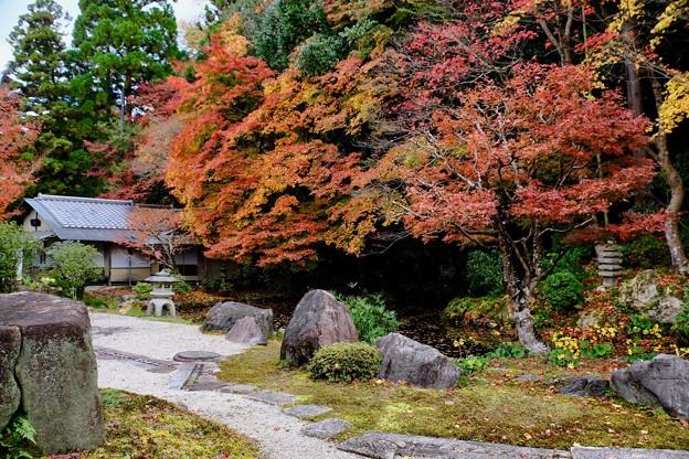 美しい庭園-京都市東山区:南禅寺
