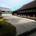 Photos: 今年はどうなるのかなぁ-京都市東山区:南禅寺