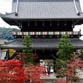 Photos: 威風堂々-京都市東山区:金戒光明寺