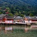 Photos: 早朝の参拝-広島県廿日市市:厳島神社