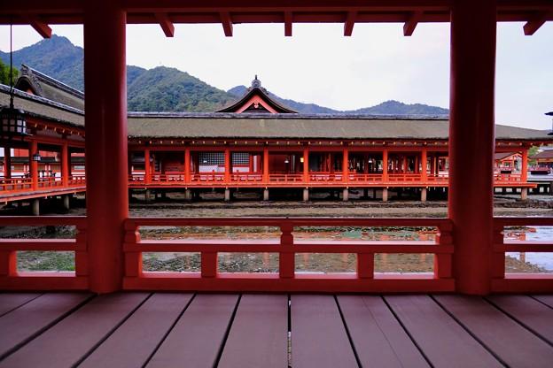平家ゆかりの神社-広島県廿日市市:厳島神社