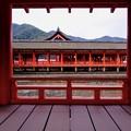 Photos: 平家ゆかりの神社-広島県廿日市市:厳島神社