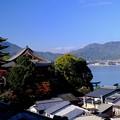 Photos: 大野瀬戸を眺む-広島県廿日市市:宮島