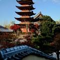 Photos: 今年は旅に行けるのかなぁ-広島県廿日市市:宮島