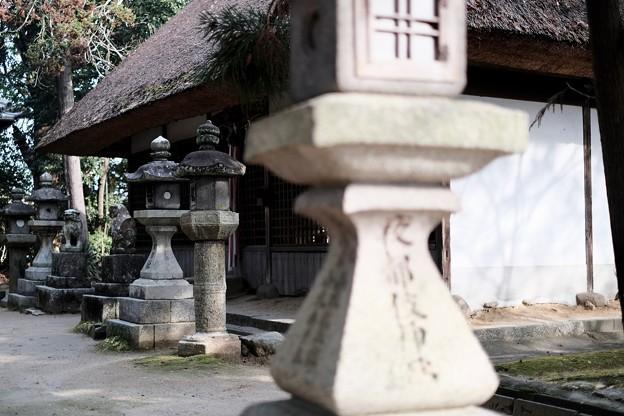 静かに佇む小さな神社-奈良県天理市:山辺の道
