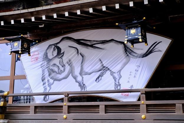 年男-奈良県桜井市:大神神社