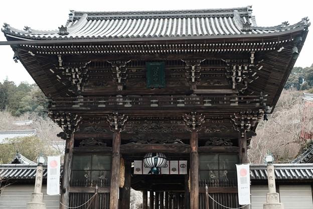 大和路の名刹へ-奈良県桜井市:長谷寺
