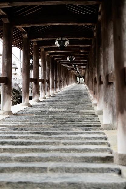 登廊の美しさ-奈良県桜井市:長谷寺