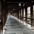 Photos: 早起きしたご褒美-奈良県桜井市:長谷寺