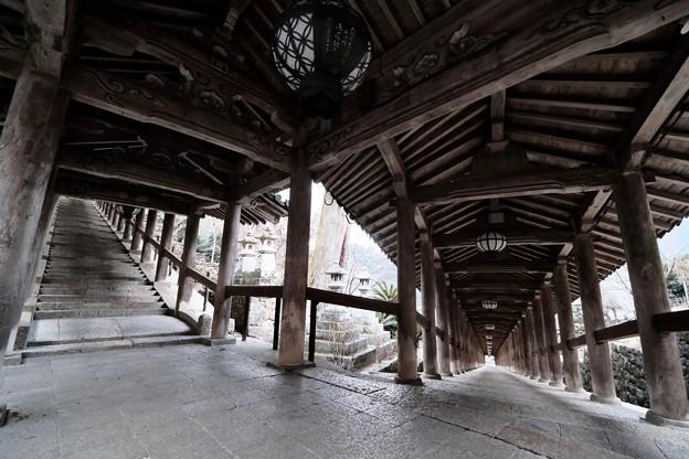 広角レンズの楽しさ-奈良県桜井市:長谷寺