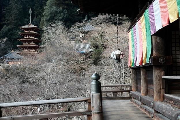 冬色の景色-奈良県桜井市:長谷寺