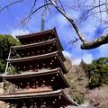 五重塔-奈良県桜井市:長谷寺