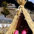 気高い美しさ-奈良県桜井市:長谷寺