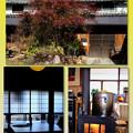 Photos: 薪ストーブのそばで-奈良県葛城市:「酪農カフェ 酪」