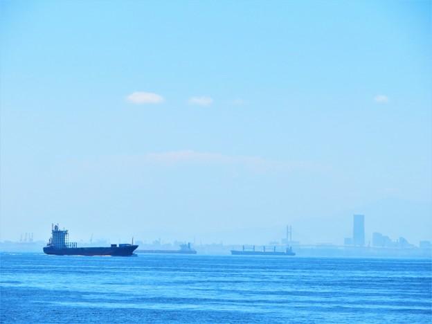 写真: 海の風景 青