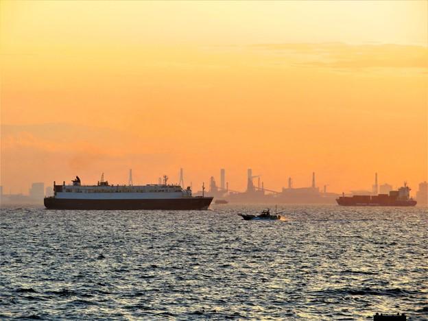 写真: 東京湾の風景