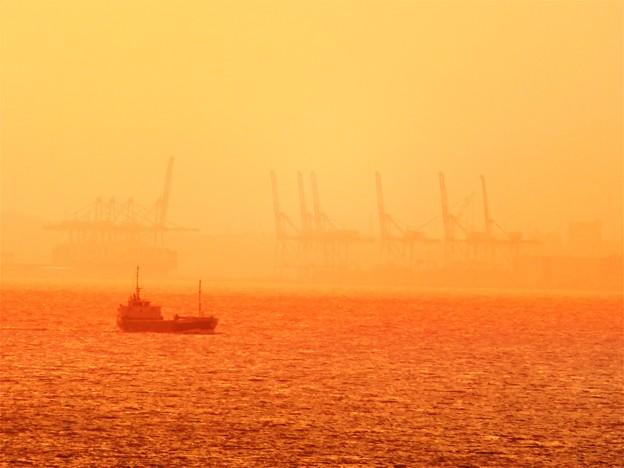 東京湾 オレンジ