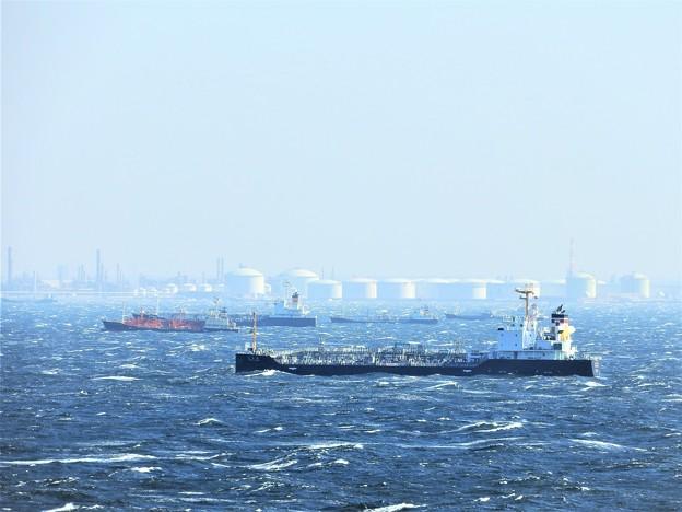東京湾 風が強い日