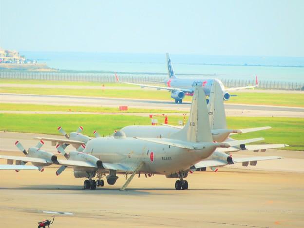 写真: 飛行機が好き2
