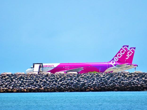 写真: 那覇港4