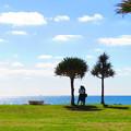 沖縄 11月の風景 2