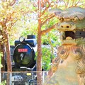 Photos: 沖縄のD51