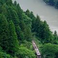Photos: 渓谷を走る