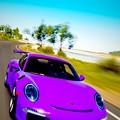 Photos: 2016 Porsche 911 GT3 RS